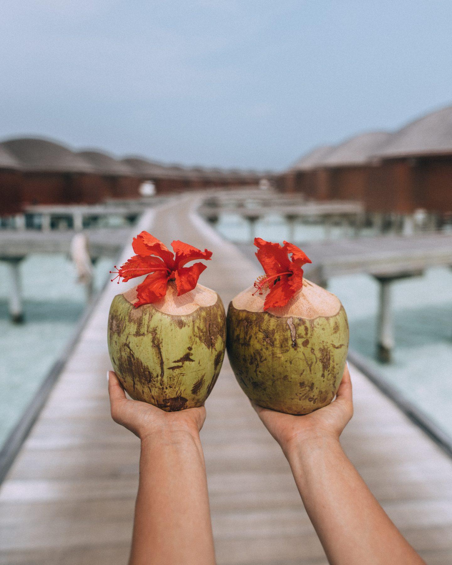 Enjoy fresh coconut at Anantara Dhigu Maldives