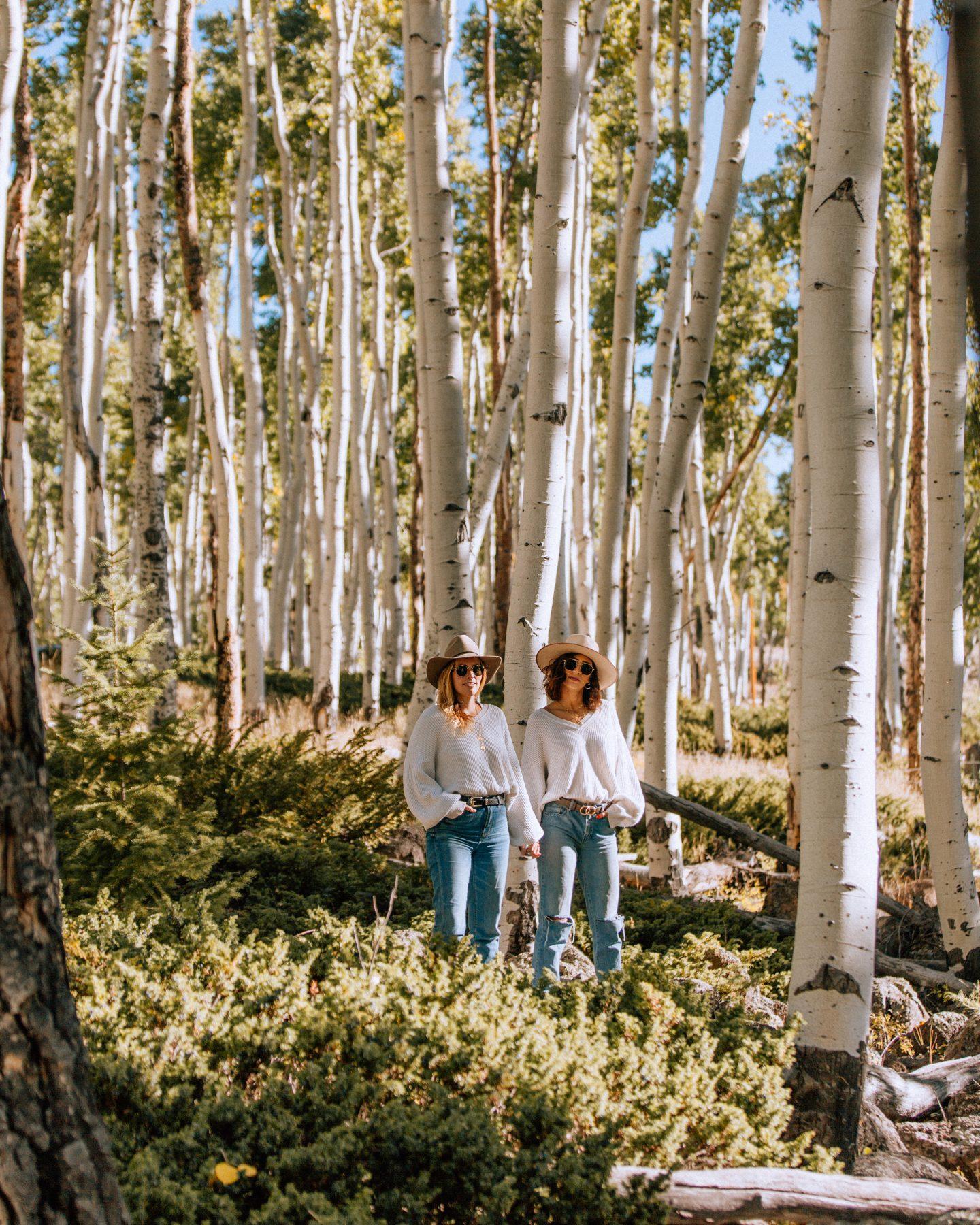 Lisa Homsy and Mel Vandersluis in the Pando Aspen grove in Fishlake National Forest in Utah