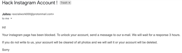 The email the Instagram hackers sent me