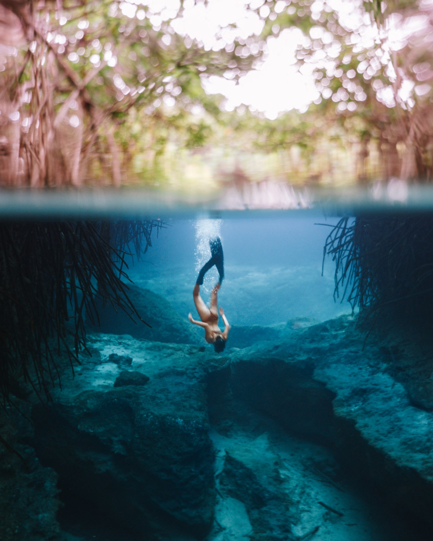 Casa Cenote Tulum. This guide gives you tips for all of the best cenotes in Tulum and the best cenotes near Tulum including what to pack for the best Tulum cenotes and more. If you are looking for day trips from Tulum, check out the best cenotes in Quintana Roo and best cenotes in Yucatan for ideas! | Tulum cenotes photography | cenotes Mexico tulum | cenotes tulum riviera maya | best cenotes in quintana roo | cenotes quintana roo | cenotes in playa del carmen