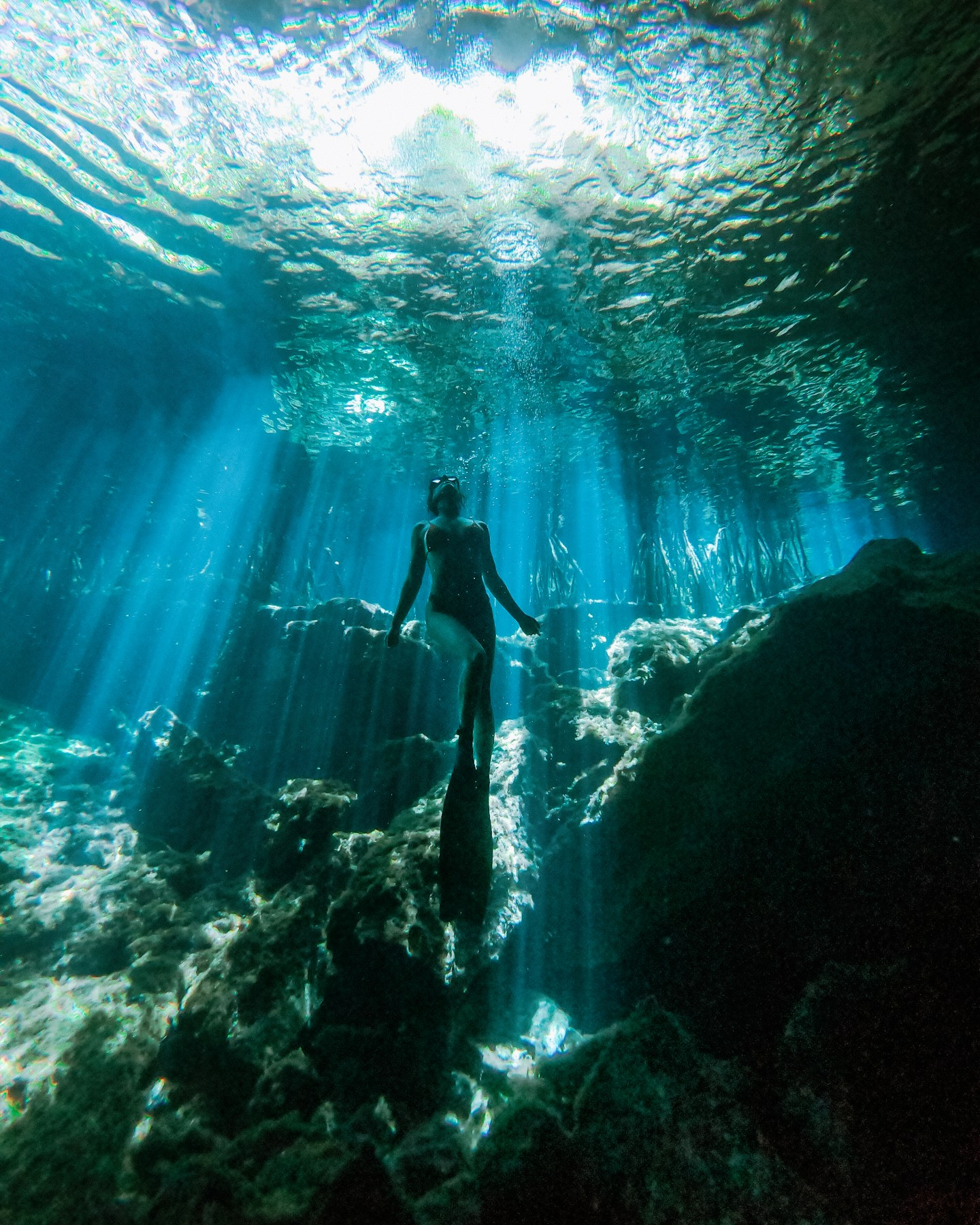 Cenote Cristalino Quintana Roo. This guide gives you tips for all of the best cenotes in Tulum and the best cenotes near Tulum including what to pack for the best Tulum cenotes and more. If you are looking for day trips from Tulum, check out the best cenotes in Quintana Roo and best cenotes in Yucatan for ideas! | Tulum cenotes photography | cenotes Mexico tulum | cenotes tulum riviera maya | best cenotes in quintana roo | cenotes quintana roo | cenotes in playa del carmen